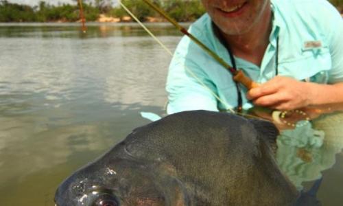 Imagem 1 de Piranha