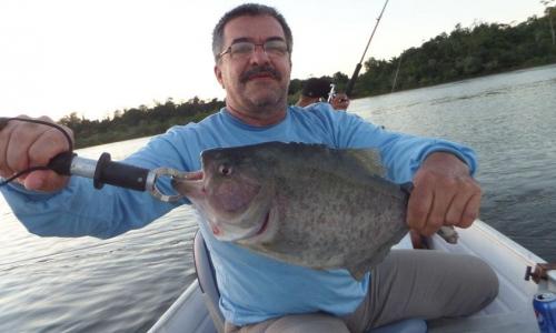 Imagem 2 de Piranha