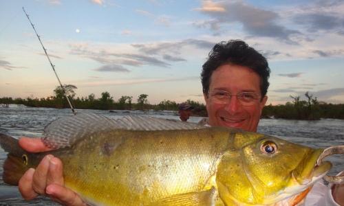 Imagem 51 de Peacock bass