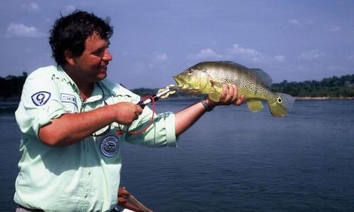 Imagem 43 de Peacock bass