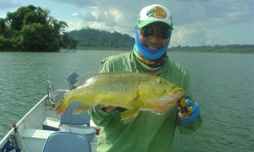 Imagem 52 de Peacock bass