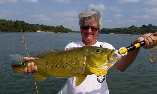 Imagem 74 de Peacock bass