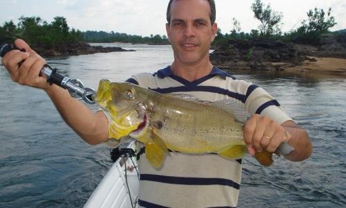 Imagem 57 de Peacock bass