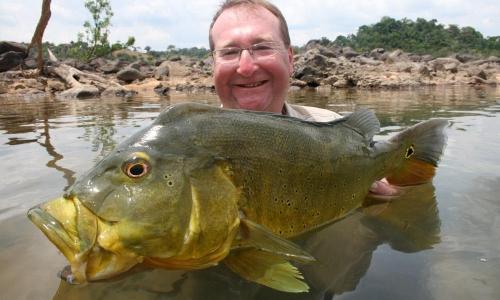 Imagem 77 de Peacock bass